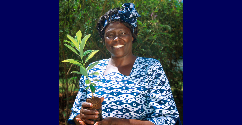 Celebrating Wangari Maathai Day 🥳